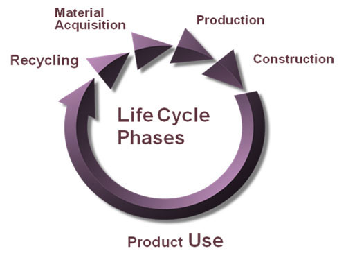 life cycle phases
